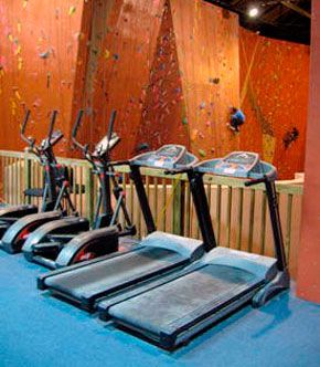 Our Fitness Facility: Treadmills